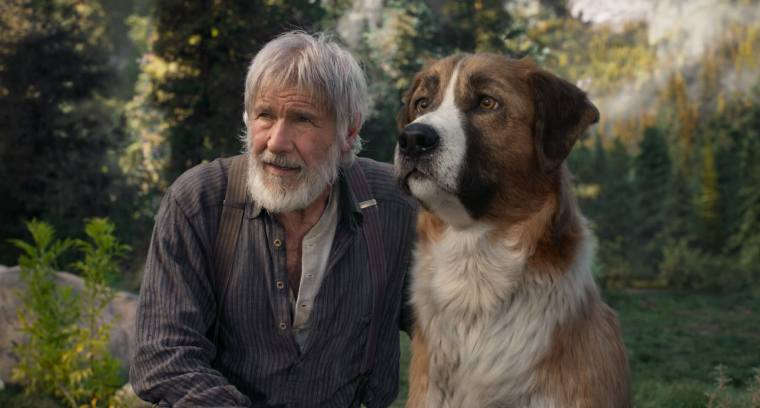 An old white-bearded man and dog rest in a lush green valley.